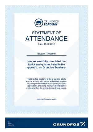 Statement of Attendance – Вадим Пикулин